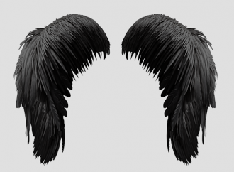 HowTo: Use transparent texture to create wings